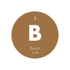元素記号缶バッジ5【B ホウ素】
